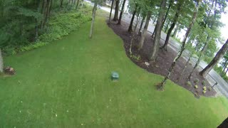 Bobcat caught on camera in yard