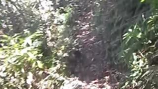 Bajando la segunda montaña