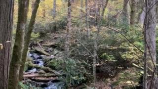 Mountain stream peace 1