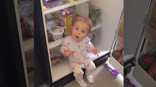 What Happens When Babies Open The Fridge   Funny baby video