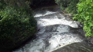 Black River runoff. Forestport, NY