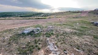 Siberian Huskies dogs play in wilderness