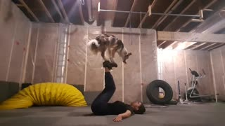 Border Collie joins owner for daily workout routine