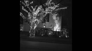 Christmas Lights 2020 Houston