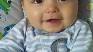 Cute Baby Quail calling!