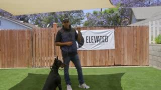 DOG TRAINING FUNDAMENTALS: EPISODE 3