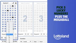 Have you placed your bet yet on the Christmas Lottery?