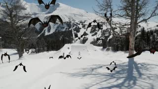 Best jumps on snow