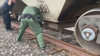 Border Patrol catch illegals