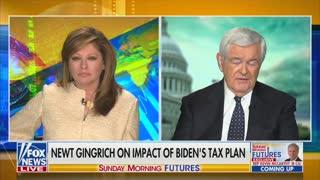 Newt Gingrich: When You Get Less Gasoline Per Dollar, That's a Biden Hidden Tax