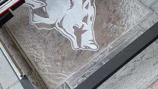 Engraving Razorback in Concrete