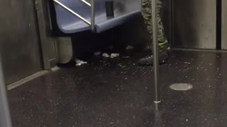 Man in army pants dances on subway train