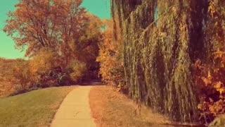 enjoying fall Colors