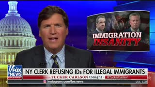 Tucker Carlson NY State illegals licenses