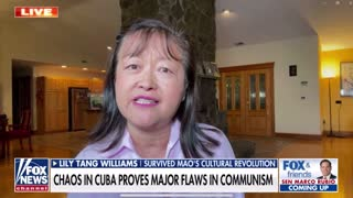 COMMUNIST CHINA TACTICS EMPLOYED IN AMERICA