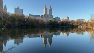 Lunch Break Walk in Central Park