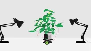 A Plant-Robot Hybrid - amazing technology