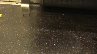 Water leaking from inside subway train