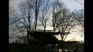 Squirrelman`s Treehouse / original song