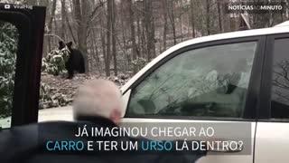 Urso fica preso dentro de carro nos EUA!