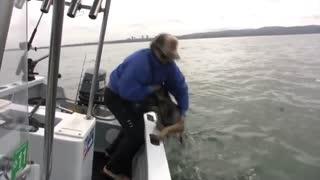 Water dog 4