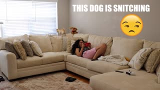 EXTREMELY FUNNY: SHE DIDN'T KNOW I WAS HOME!!