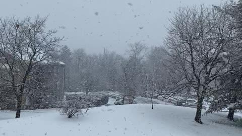 Bigger Flakes of SNOW