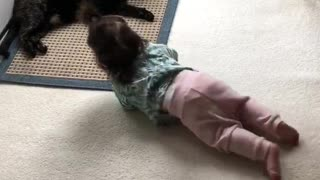 Kitty inspires baby to learn how to crawl