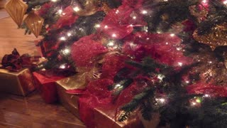 Santa Claus is Coming To Town - Christmas Sax, Santa Saxophone, Greg Vail sax