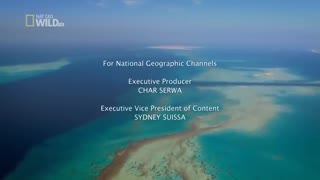 PLANET EARTH II SEASON 1 EPISODE 1 - 6 FULL | Documentary, David Attenborough, - HD