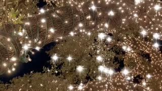 Lights in Austin Texas