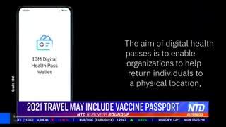 Vaccine Travel passport??