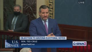 Ted Cruz UNLEASHES HELL From Senate Floor Over Voter Fraud
