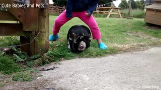 Different animals scaring and chasing people