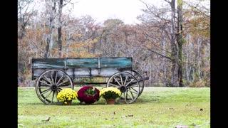Autumn 2020 in Eastern North Carolina