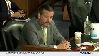 Ted Cruz Goes Into Prosecutor Mode, EXPOSES FBI's Wray on Antifa