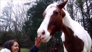 I Love A Horse With Personality
