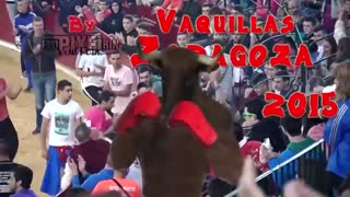 Bull fight accidents compilation 2020