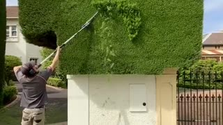 A Satisfying Example of Perfect Hedge Trimming