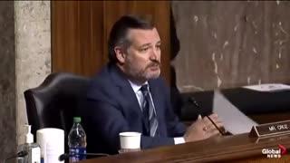 Senator Cruz