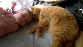 Cat attacks baby - with love..kkkk