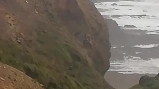 Cliffside Collapses in Cornwall