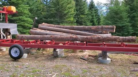 Sawmill Logs 2