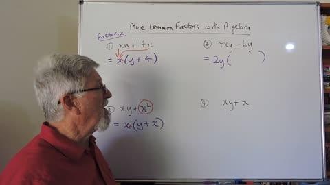 Math Factor Set A 02 Common Factors With More Algebra