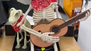 Skeleton Singing Hank Williams