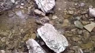 Guy walking across small water stream slips on rocks