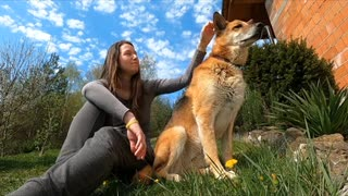 Play and have fun with the lovely dog Atusa