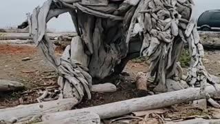 Artist Creates Stunning Driftwood Sculpture