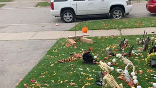 Social Distancing Trick or Treat