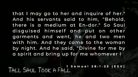 """""""Tall Saul Took a Fall"""""""
